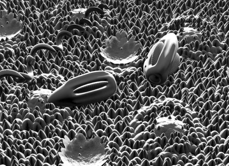 La Nanobótica hará realidad la fusión Hombre-Máquina de forma orgánica.